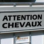 Attention Chevaux 01