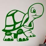 Jeune Tortue Cartoon